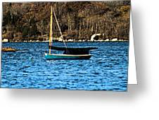 In The Cove Greeting Card