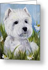 In The Daisies Greeting Card