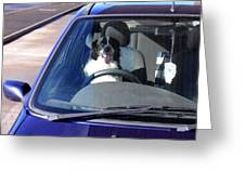 In The Driving Seat Greeting Card