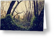 In The Forest Of Dreams Greeting Card