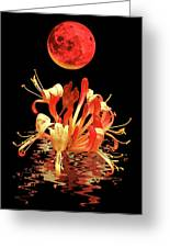 In The Heat Of The Night 2 Honeysuckle Red Moon Greeting Card