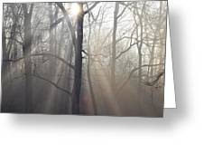 In The Morning Greeting Card by Bill Cannon