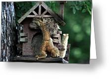 In The Nut House Greeting Card