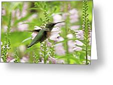 In The Obedient Garden Greeting Card