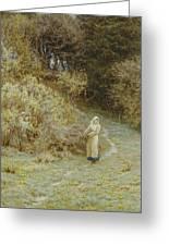 In The Primrose Wood Greeting Card by Helen Allingham