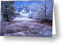 In The Snowy Forest Greeting Card