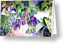 In The Vineyards Greeting Card