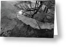 In The Water Bw  Greeting Card