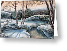 In The Winter In Carpathians.  Greeting Card
