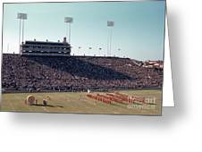 In This Vintage 1955 Photo The University Of Texas Longhorn Band Greeting Card