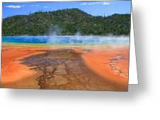 In Yellowstone Greeting Card