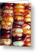 Indian Corn Patterns Greeting Card