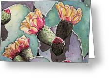 Indian Fig Cactus Greeting Card by Regina Ammerman