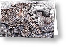Indian Leopard Greeting Card