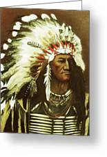 Indian With Headdress Greeting Card by Martin Howard