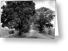 Indiana Road And Trees Greeting Card