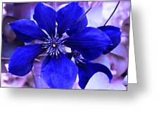 Indigo Flower Greeting Card