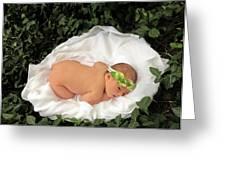 Newborn Infant Lying In Ivy Greeting Card