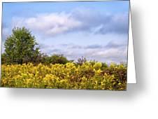 Infinite Gold Sunlight Landscape Greeting Card