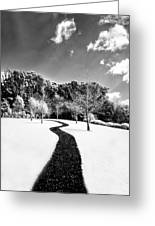 Infrared Parkland Greeting Card