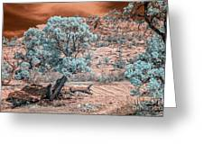 Infrared Zion Greeting Card