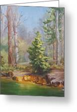 Inlet,winter's End, Mcdowell Greeting Card