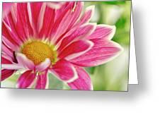 Inmost Feelings. Greeting Card