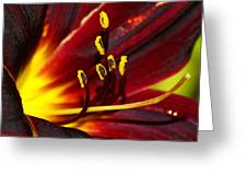 Inner Glow 2 Greeting Card