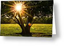 Innerlight Greeting Card