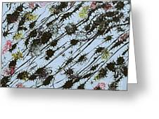 Insects Loathing - V1sd100 Greeting Card