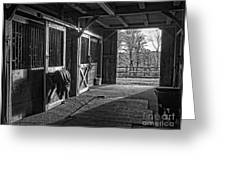 Inside The Horse Barn Black And White Greeting Card