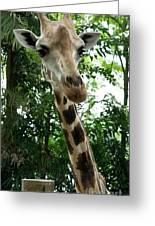 Inspector Giraffe Greeting Card