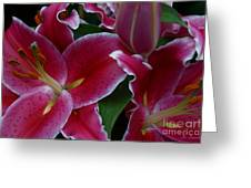 Intimate Greeting Card