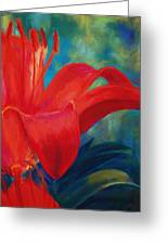 Intimate Lilly Greeting Card