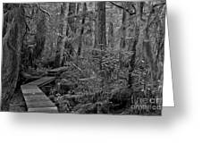 Into A Magical World Black And White Greeting Card