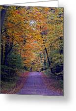 Into Fall Greeting Card