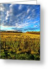 Into The Field Greeting Card
