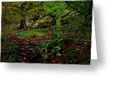 Into The Forest Of Fontainebleau Greeting Card