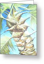 Into The Palm Greeting Card