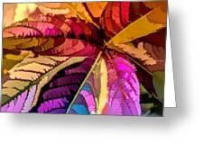 Into The Rainbow Greeting Card