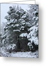 Into The Snowy Wood Greeting Card