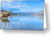 Into The Wild Blue Yonder Greeting Card