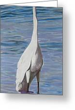 Intracoastal Sentinel   Great Egret Greeting Card