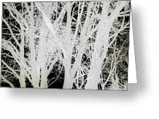 Inverted Nature Greeting Card