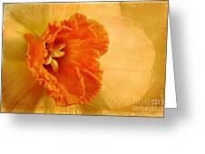 Inviting Greeting Card