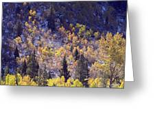 Inyo Aspens Greeting Card