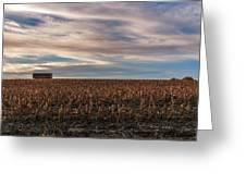 Iowa Corn Fields In The Fall Greeting Card