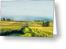 Iowa Cornfield Panorama Greeting Card