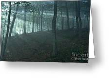 Iowa Fog Rays Greeting Card