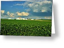 Iowa Soybean Farm Greeting Card